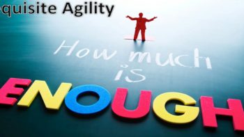 Permalink to: Requisite Agility – How Much Is Enough?