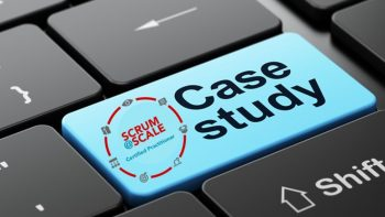 Permalink to: Case Studies in Scrum @ Scale Implementations